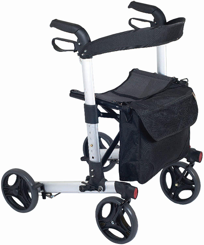NRS healthcare upright walker